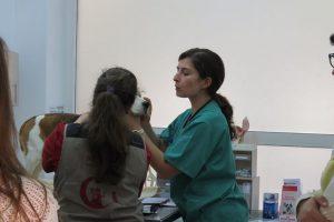 Wokshop de Vacinação