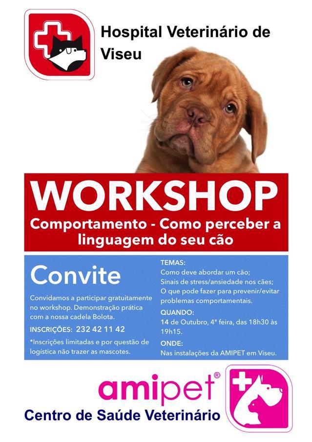 Workshop 14Out