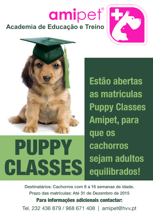 Puppy Classes Amipet
