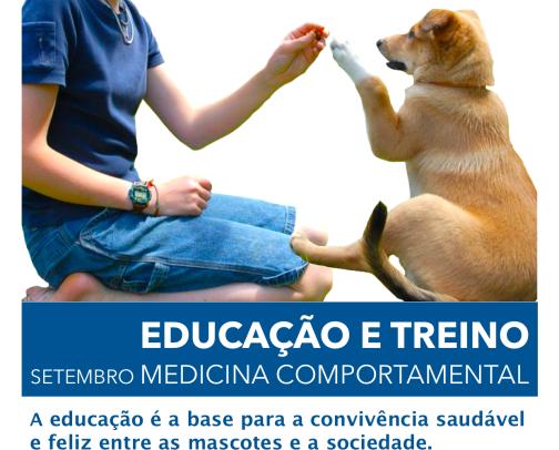 Educação e treino HVV