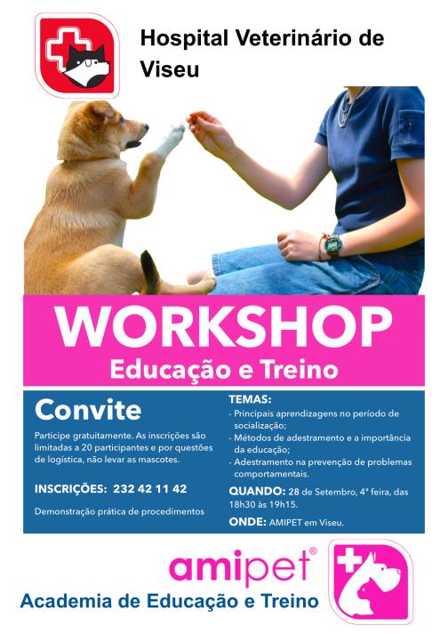 workshop-28set2016
