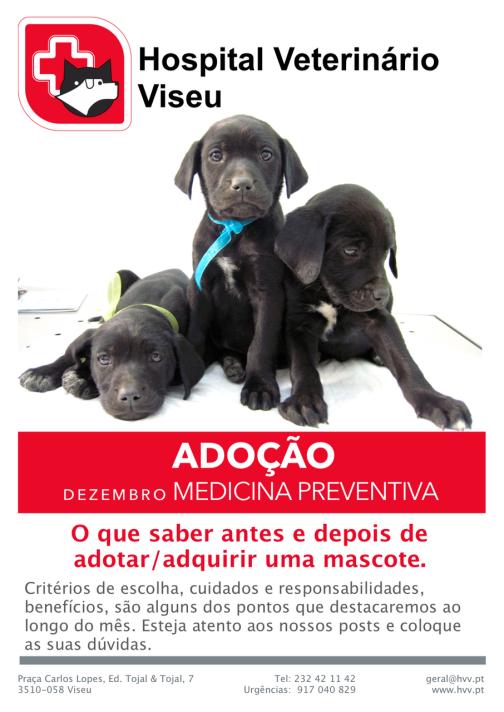 adocao-hvv
