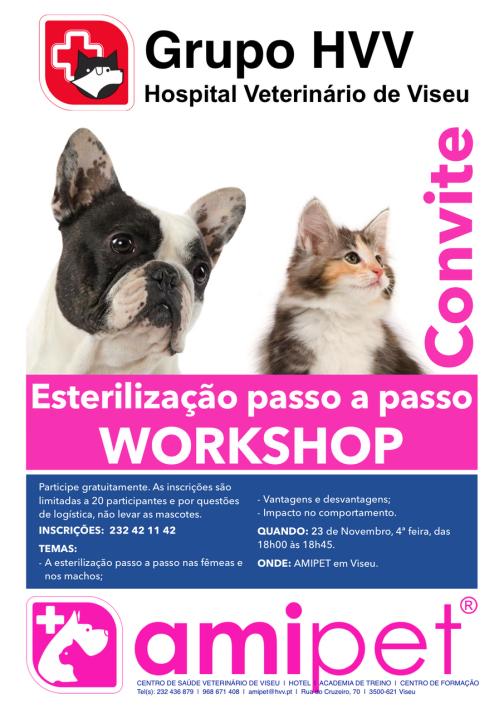 workshop-23nov2016