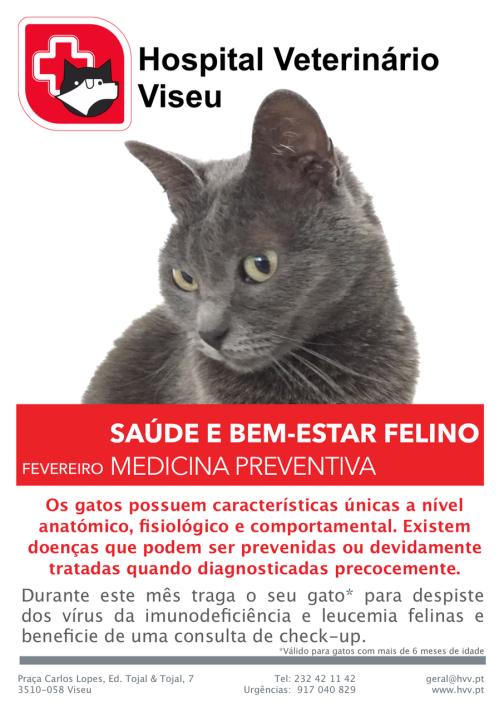 Saúde felina HVV