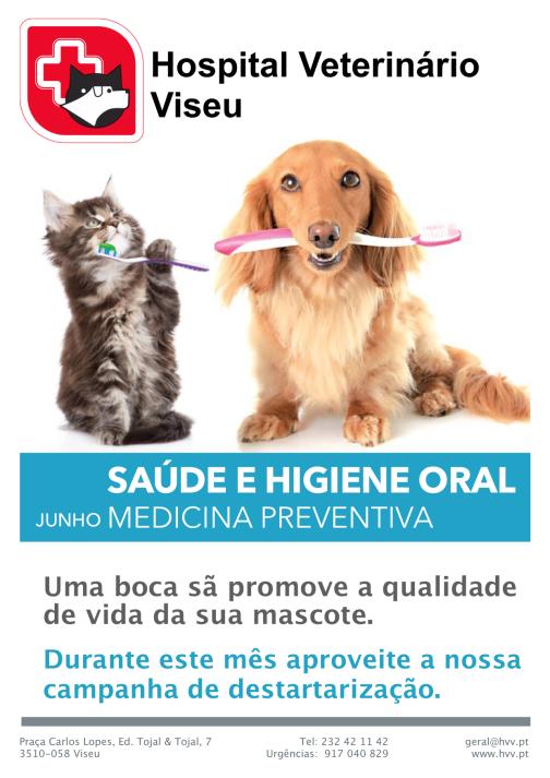 Saúde oral HVV